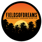 Fields of Dreams - Professional Cannabis Genetics